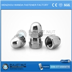 Stainless Steel Cap Nuts din1587